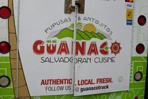 guanaco 1